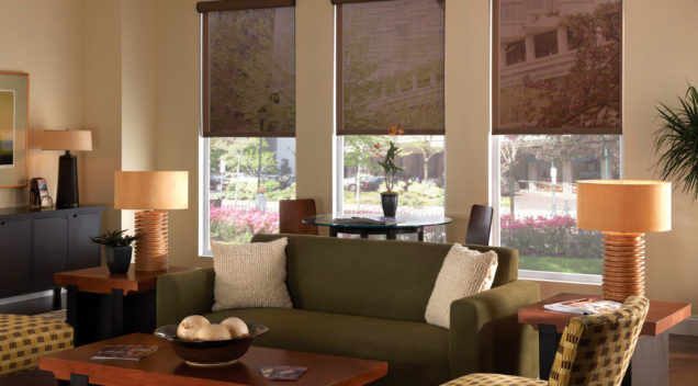 solar shades from Blended Blinds