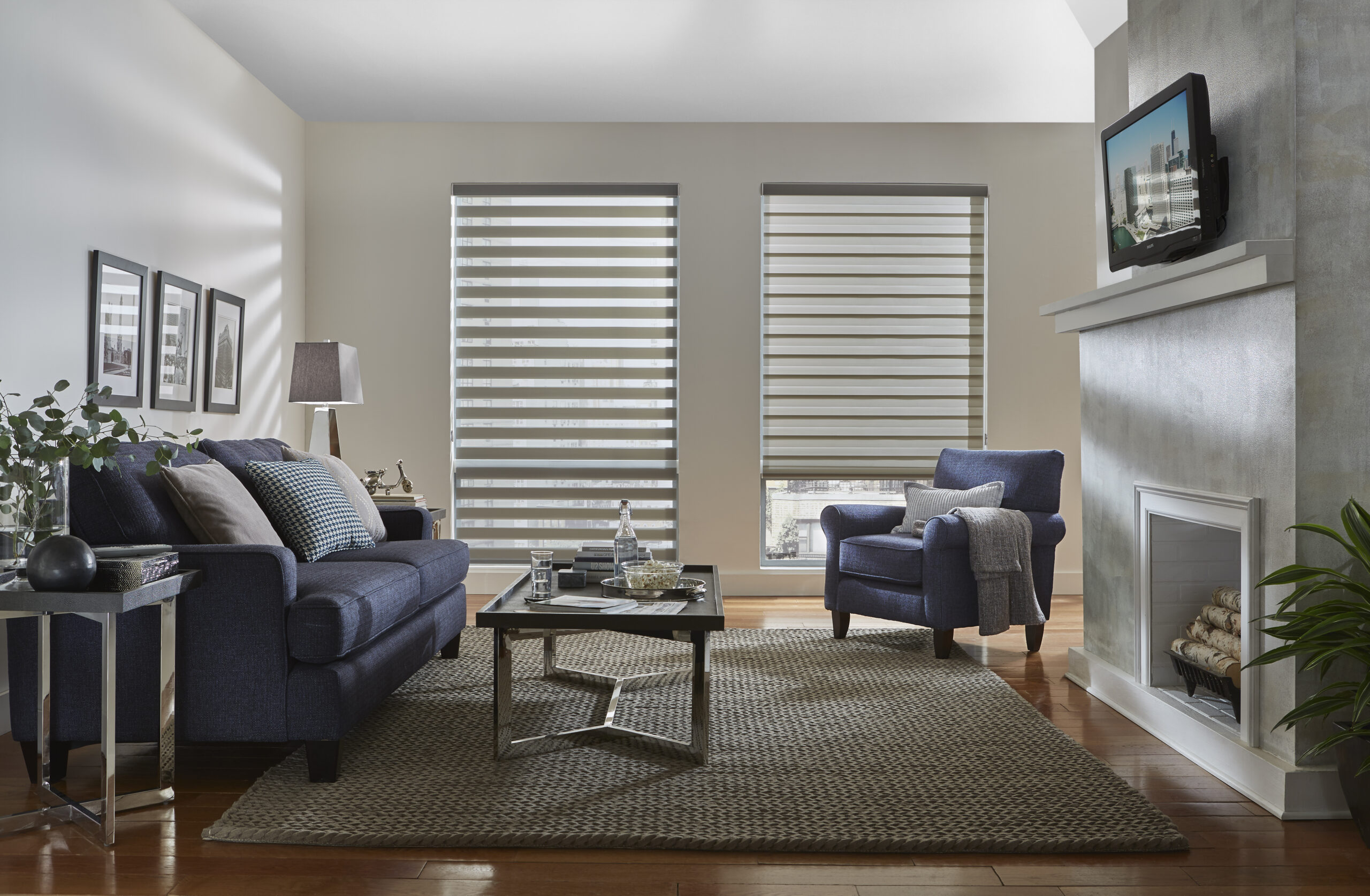 dual shades in family room