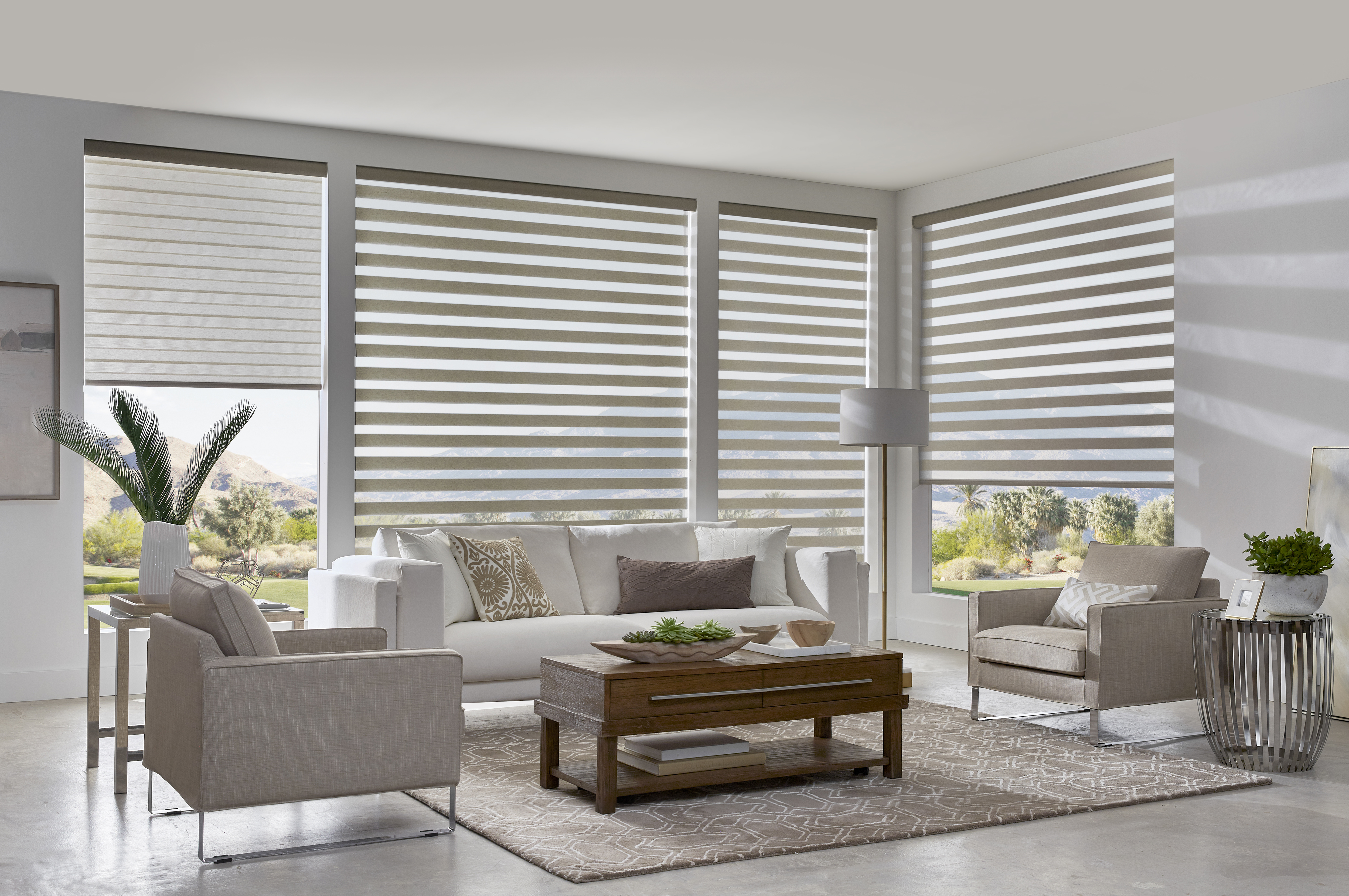 dual shades in living room