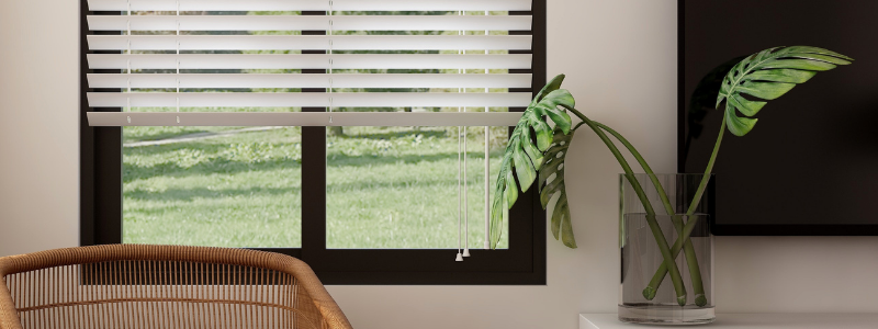 different color blinds